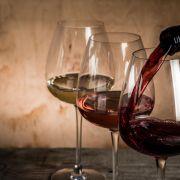 Tour Degustazione di Vino