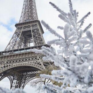Το Παρίσι έγινε γνωστό και ως η Πόλη του φωτός, από τότε που εγκαταστάθηκαν στις κύριες λεωφόρους του φανάρια γκαζιού. Είναι η πρωτεύουσα της Γαλλίας και της περιφέρειας Ιλ ντε Φρανς και μία από τις ιστορικότερες και μεγαλύτερες πόλεις του κόσμου. Το Παρίσι περιλαμβάνει την πόλη του Παρισιού και τα περίχωρα και βρίσκεται σε ένα λεκανοπέδιο. Επιπλέον είναι η πολιτιστική και οικονομική πρωτεύουσα της Γαλλίας, το σημαντικότερο κομβικό σημείο της και έδρα πολλών διεθνών οργανισμών, όπως της UNESCO. Η Disneyland Paris (ex Euro Disney) ή Disneyland Παρίσι, είναι ένα τουριστικό πάρκο με συνολική έκταση 22 τετραγωνικών χιλιομέτρων που βρίσκεται στην κοινότητα του Chessy, 32 χιλιόμετρα ανατολικά του Παρισιού. Το συγκρότημα περιλαμβάνει 2 θεματικά πάρκα - Parc Disneyland & Walt Disney Studios - ξενοδοχεία, καταστήματα, εστιατόρια, γήπεδα γκολφ κ.α. Πρόκειται για το νούμερο ένα ταξιδιωτικό προορισμό της Ευρώπης με περισσότερους απο 13 εκατομμύρια επισκέπτες κάθε χρόνο. Η Disneyland Paris άνοιξε τις πόρτες της για το κοινό για πρώτη φορά στις 12/04/1992, υπό την ονομασία Euro Disney Resort και από τότε έχει φιλοξενήσει περισσότερους από 320 εκατομμύρια ταξιδιώτες.