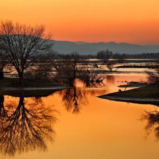 Οι Σέρρες, η πρωτεύουσα του ομώνυμου νομού, είναι ένας τόπος με υπέροχη φύση και πλούσια πολιτισμική παράδοση. Οι Σέρρες ή «τα Σέρρας», όπως λένε οι ντόπιοι, είναι η πόλη που δεν φοβάται το χρόνο, που αναγεννάται σαν τον φοίνικα από τις στάχτες του μετά από κάθε καταστροφή μέσα στους αιώνες. H λίμνη της Κερκίνης, είναι ένας από τους σημαντικότερους υγροτόπους της Ελλάδος. Εκεί ζει, αναπτύσσεται και αναπαράγεται μια βιοκοινότητα, που η προστασία και διατήρησή της για λόγους ηθικούς, αισθητικούς, επιστημονικούς και οικονομικούς, είναι ζωτικής σημασίας.