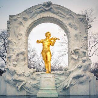 Η Βιέννη είναι η πρωτεύουσα της Αυστρίας και ένα από τα ομόσπονδα κρατίδιά της. Αποτελεί τη μεγαλύτερη πόλη καθώς και το πολιτικό, πολιτισμικό και οικονομικό κέντρο της χώρας.