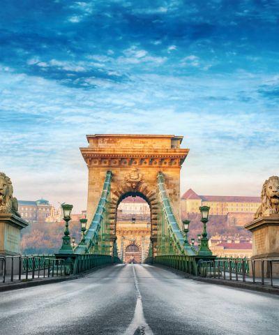 Η Βουδαπέστη είναι η πρωτεύουσα της Ουγγαρίας και έδρα της κομητείας της Πέστης. Η Βουδαπέστη έγινε ενιαία πόλη που καταλαμβάνει και τις δύο όχθες του Δούναβη, με τη συγχώνευση της Buda και της Pest. Η πόλη χαρακτηρίζεται από τοπογραφικές αντιθέσεις: η Βούδα είναι κτισμένη στους λόφους στη δυτική όχθη, ενώ η σημαντικά μεγαλύτερη Πέστη εκτείνεται σε μια επίπεδη αμμώδη έκταση στην απέναντι όχθη. Είναι η έβδομη μεγαλύτερη πόλη στην Ευρωπαϊκή Ένωση.