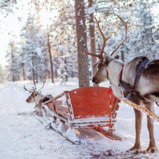 Το Ρόβανιεμι, είναι πόλη της Φινλανδίας και πρωτεύουσα της περιφέρειας της Λαπωνίας. Πρωτοχρονιά στη Λαπωνία