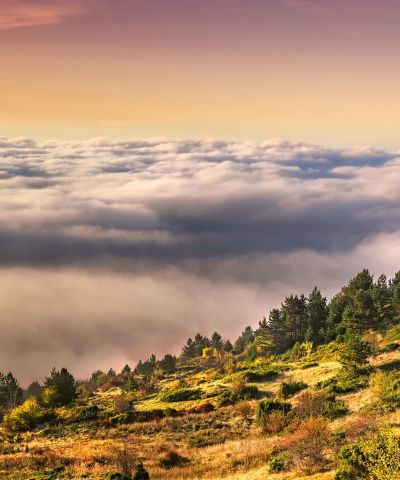 Όρος Βόρας