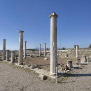 Η Μακεδονία έχει πρωτεύουσα τη Θεσσαλονίκη και κατατάσσεται ως το μεγαλύτερο σε έκταση γεωγραφικό διαμέρισμα της Ελλάδας. Σε αυτή την ξενάγηση θα σας δωθεί η ευκαιρία να εξερευνήσετε τη Μακεδονία, τη γενέτειρα του Μεγάλου Αλεξάνδρου, να πραγματοποιήσετε ένα ταξίδι 7.000 ετών ελληνικής ιστορίας και να δείτε τοπία που δε θα ξεχάσετε ποτέ.
